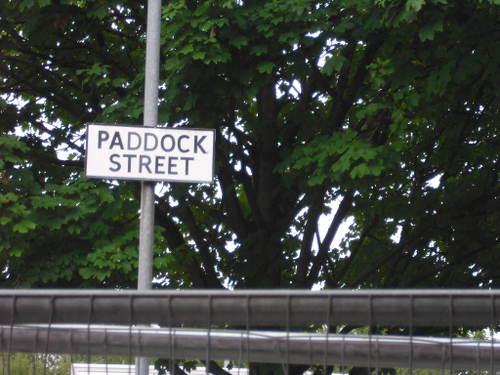 PaddockStreetHole006