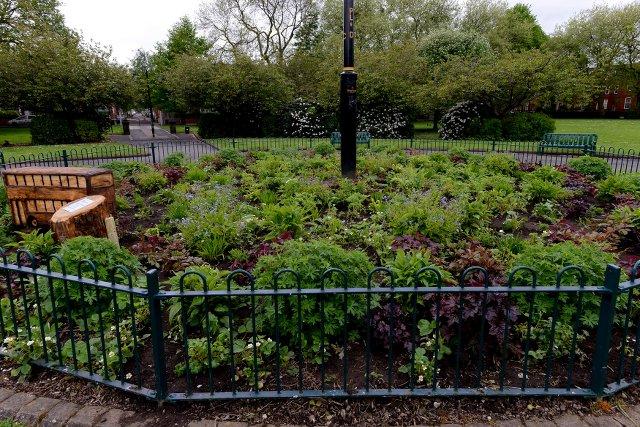 Hullard Park centre circle.